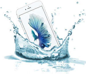 <iPhone 6s plus water damage service> <iPhone 6s plus water damage service Melbourne CBD> <iPhone 6s plus water damage services melbourne cbd>